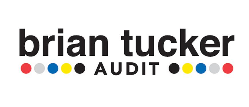 Brain Ticker Audit Logo
